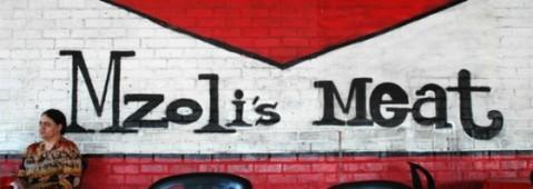 mzolis-235253_560x199